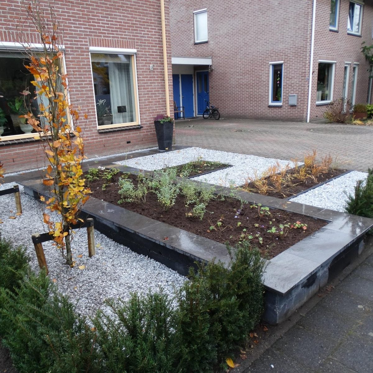Strakke tuin in balkbrug allround tuinen for Strakke tuin